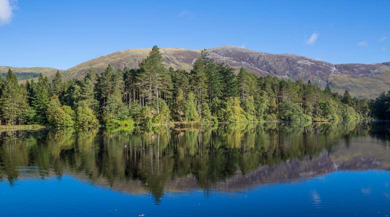 Nadelwälder des Glencoe Lochan