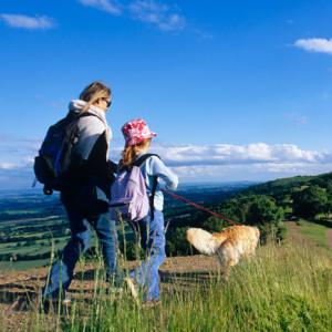 Hund Malvern Hills Herefordshire England Credits VisitBritain