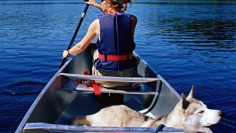 Hund und Kanutrip Credits Innovation Norway