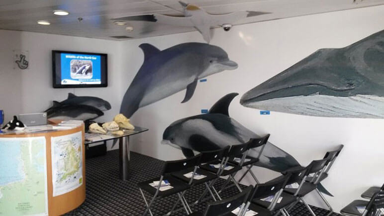 Wildlife Center ORCA an Bord © DFDS