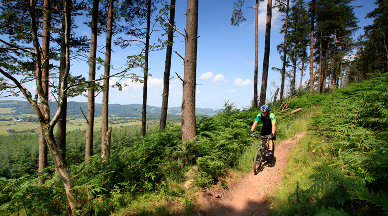 Mountainbiking in Schottland co VisitScotland