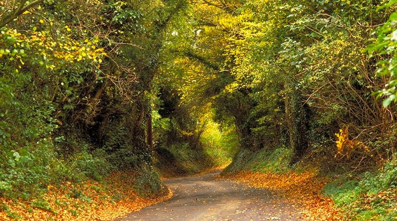 Herbst in den Cotswolds