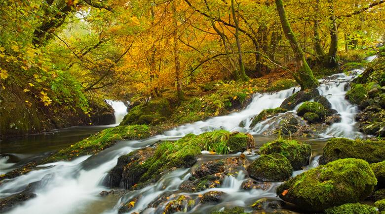 Herbst im Snowdonia National Park