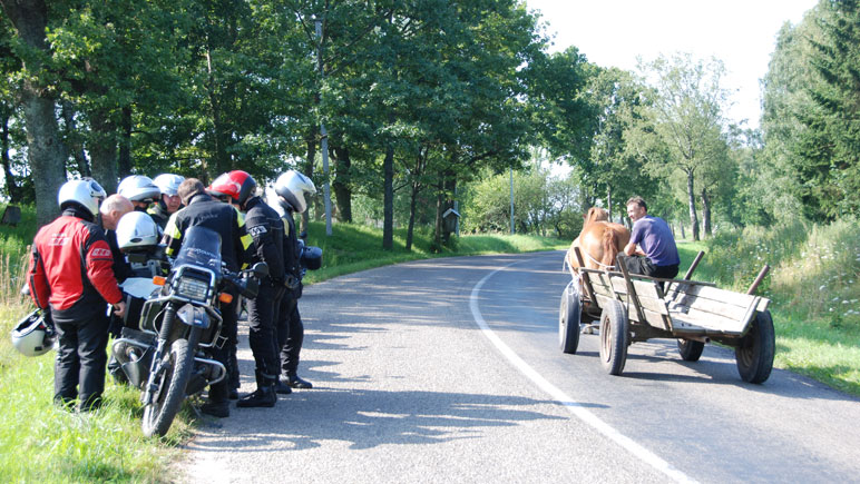 Begegnung: Motorrad gegen echte Pferdestärke