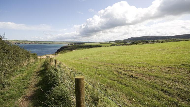 Pembrokeshire Coast Path - Schmaler Pfad entlang von Wiesen