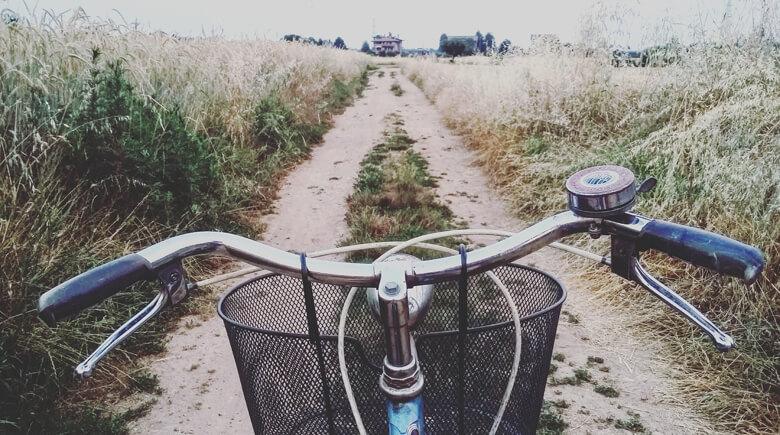 Mit dem Fahrrad im Feld