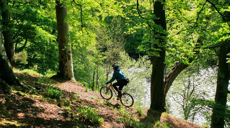 Mountainbikin in Schottland