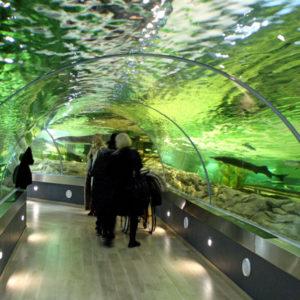 Klaipeda Meeresmuseum