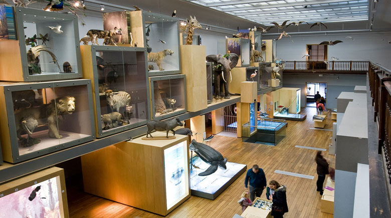 Newcastle Museum Hancock credits Colin Davison