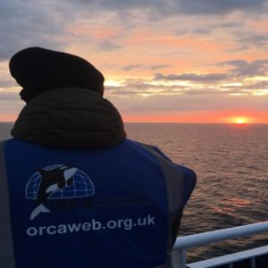 ORCA amsterdam-newcastle
